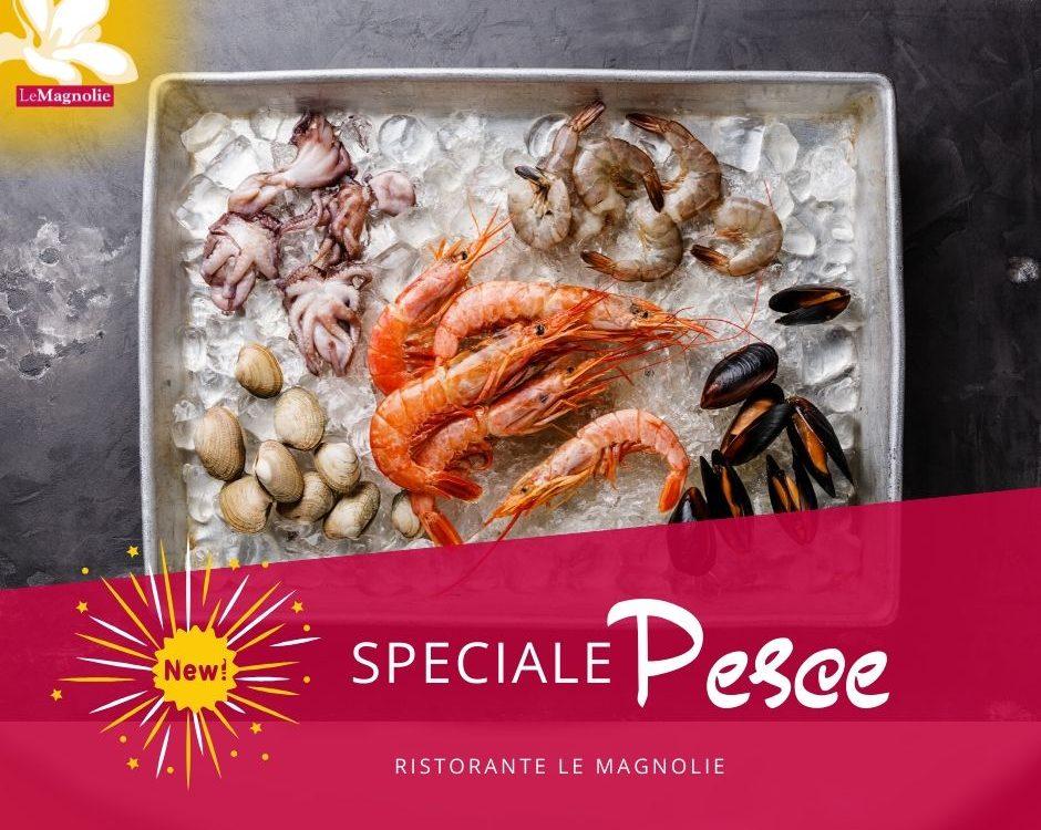 Menu Pesce da asporto | Le Magnolie Ristorante e Pizzeria | Frigintini